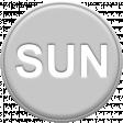 Grey Pleather Weekday - Sun