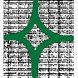 MHA - Green Star