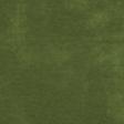 Green Paper - MSC