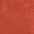 Red Paper - MSC