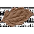 MSC - Brown Leaf