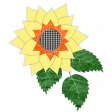 Fall - Sunflower Gingham - Sunflower