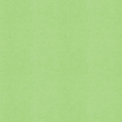 BYB2016 - Paper Solid Green Light