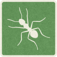 Picnic Day_Pictogram Chip_Green_Ant