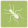 Picnic Day_Pictogram Chip_Green Light_Ant