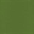 Raindrops & Rainbows - Paper Solid Green Dark
