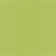 Raindrops & Rainbows - Paper Solid Green Light