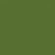 Sparkling Summer - Paper Solid Green Dark - UnTextured