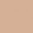 Sparkling Summer - Paper Solid Tan Dark - UnTextured