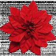 Winter Wonderland Christmas - Poinsettia Red