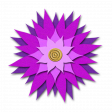 Flower - Purple fabric