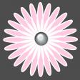 Flower – Baby/Child 1