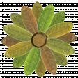 Flower - Green leaves 3