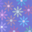 Paper - Colorful flowers on blue