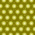 Paper - Kiwi