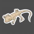 Lizard 1 - Petrii Gecko (Sticker)