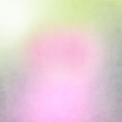 Blended Paper 4