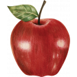 Fruitopia Kit Apple
