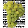 Fruitopia Kit Grapes