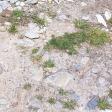 Grass Stones Dirt