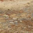 Dirt Stones
