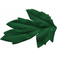 Peachy Keen Leaf 4