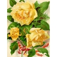 Seriously Floral Pocket Card 09 3x4