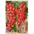 Seriously Floral Pocket Card 13 4x6