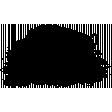 Buffalo Stamp Template