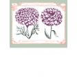 Wildflower Pocket Card 01 3x4
