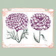 Wildflower Pocket Card 01 4x4