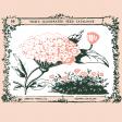 Wildflower Pocket Card 05 4x4