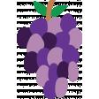 Grape Illustration