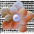 Public Discourse Flower 1
