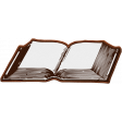 Enchanting Books Leather Book