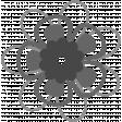 Paper Flower 22 Template
