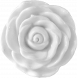 Fancy Flower 2
