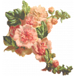 Seriously Floral 2 Illus - Floral 8