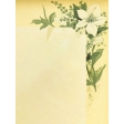 Seriously Floral #2 Pocket Cards Kit - JC 20