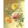 Seriously Floral #2 Pocket Cards Kit - JC 28