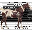 Go West Horses - Horse 7