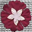 The Good Life: February Elements - flower 2