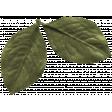 The Good Life: February Elements - leaf 5