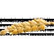 Spring Fields Elements Kit #2: wheat