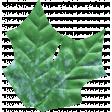 The Good Life: July 2020 Elements Kit Leaf 1