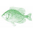 The Good Life - July 2020 Tags & Stickers - Print Sticker Fish
