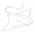 The Good Life - July 2020 Tags & Stickers - Print Sticker Manta Ray