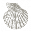 The Good Life - July 2020 Tags & Stickers - Print Sticker Seashell 3