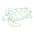 The Good Life - July 2020 Tags & Stickers - Print Sticker Turtle