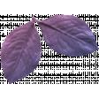The Good Life: August 2020 Elements Kit - leaf 3b